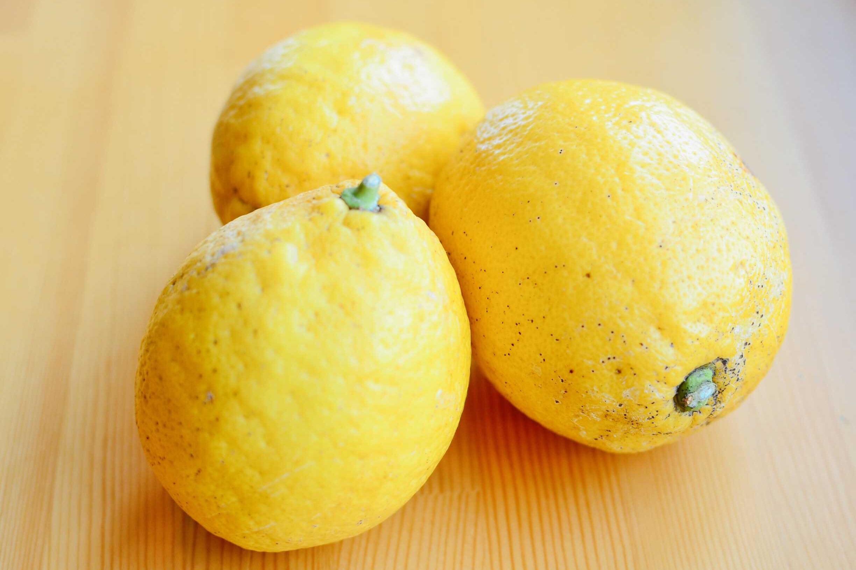 レモンの季節限定 RAWレモンタルト